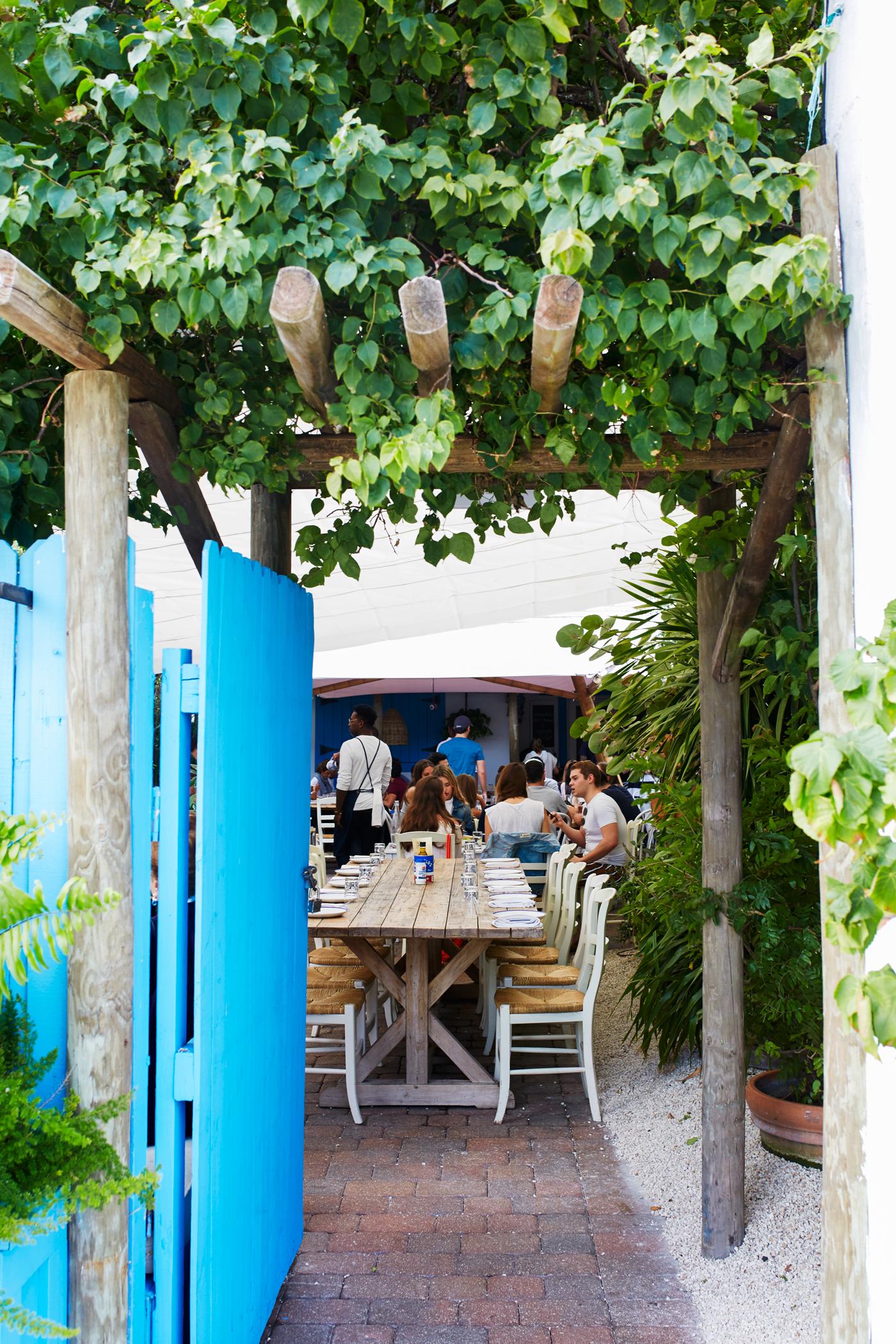 Charming mediterranean bistro in miami with love from kat for Mandolin mediterranean kitchen
